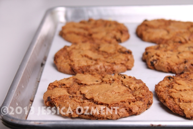 ozment oatmeal cookie_04