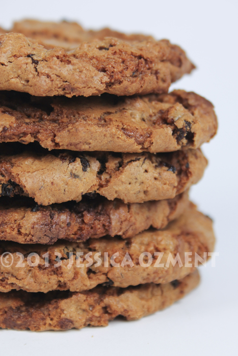 ozment oatmeal cookie_05